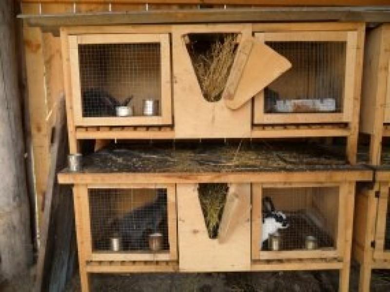 Самые лучшие клетки для кроликов своими руками